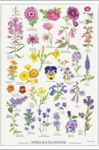 Spiselige blomster kirsten tind