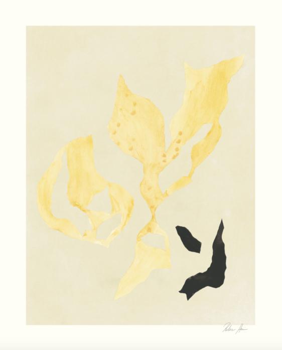 Hein Studio - Shadow 15